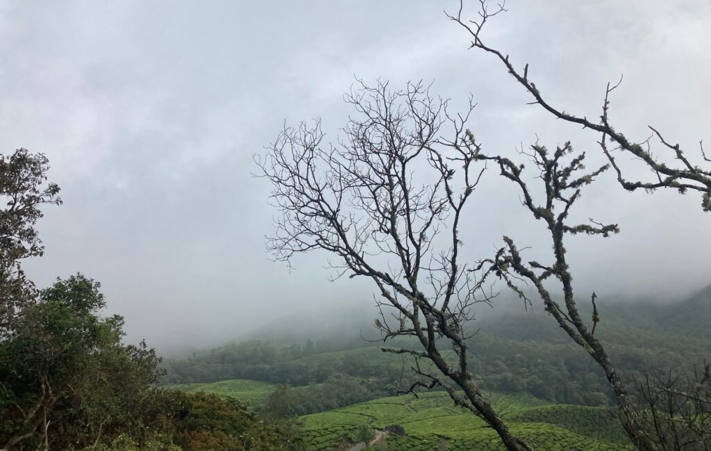 Munnar Hill Station For a Beautiful Getaways